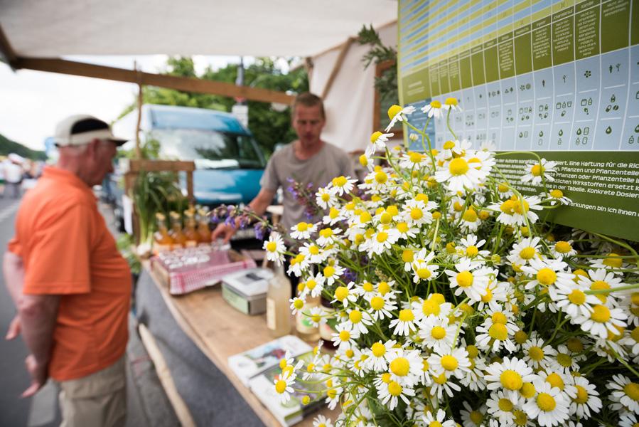 Umweltfestival Stand Blumen im Fokus